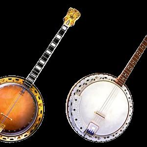 Banjo-Mandolin Repair