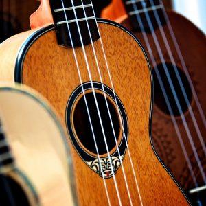 Guitar-Bass-Ukulele Repair